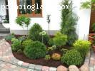Uredjenje vrtova - Cetinari, liscari, perene, tepih trava